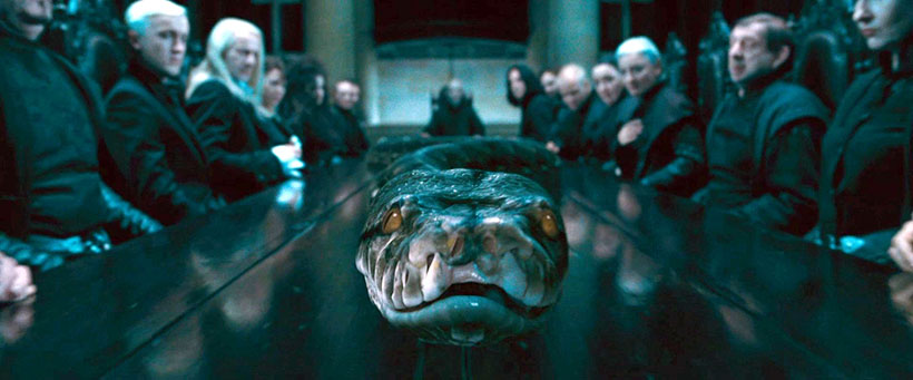 Image result for snakes in harry potter